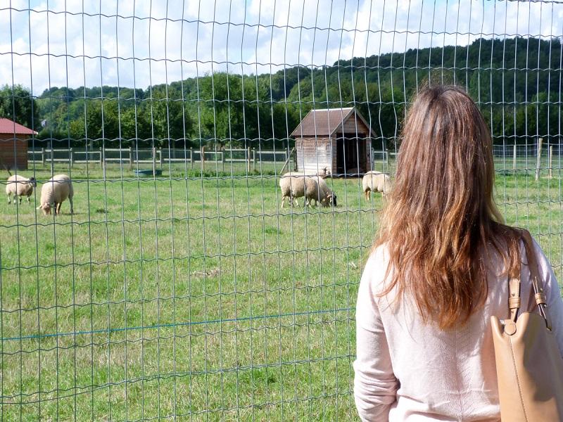 Ferme de Navarre © Evreux Normandie Tourisme10